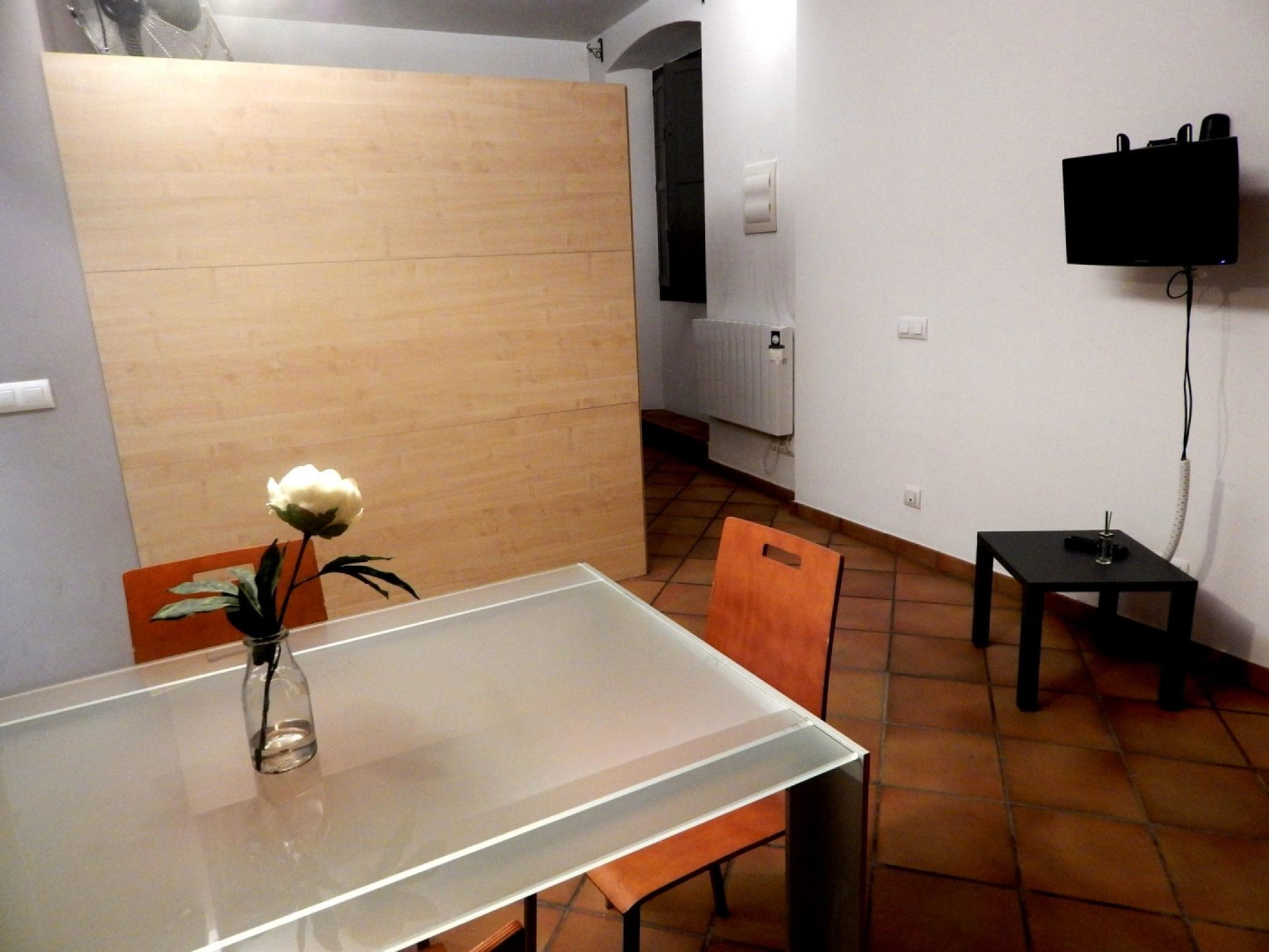 Rent Apartment in Girona - Girona Loft Muralla 2 - 8