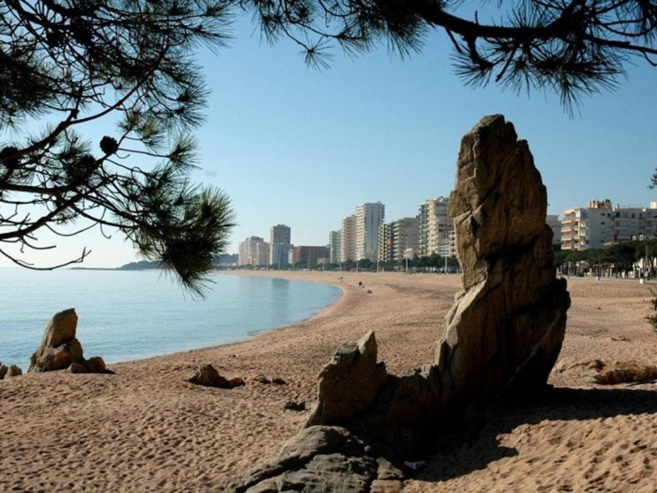 Rent Apartment in Platja d'Aro - Ground floor in front of the sea Ridaura BX4 - 31