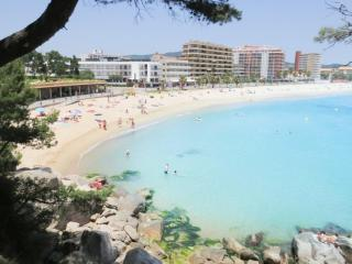 Rent Apartment with Swimming pool in Sant Antoni de Calonge - Complexe Canigó amb piscina i 1º linea de mar - 19