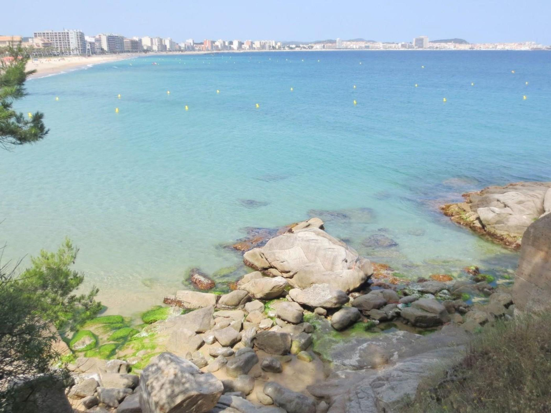 Rent Apartment with Swimming pool in Sant Antoni de Calonge - Complexe Canigó amb piscina i 1º linea de mar - 23