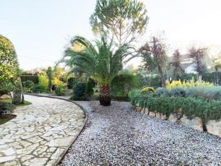 Rent Villa with Swimming pool in Caldes de Malavella - Villa a Caldes de Malavella Molins - 13